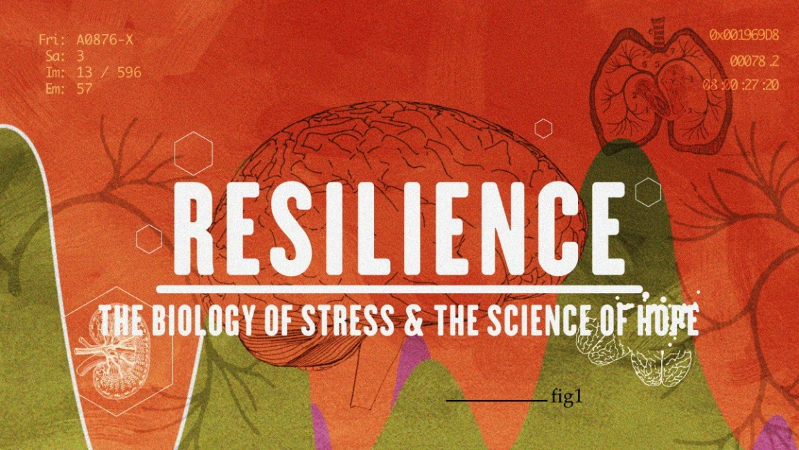 Film Screening & Panel: Resilience